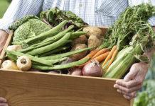 Profesjonalne skrzynie i skrzynki do transportu warzyw